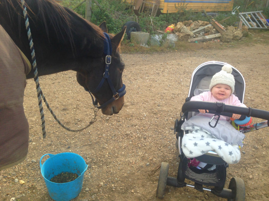 baby-at-the-stables